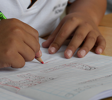 Begeleiding bij leerproblemen